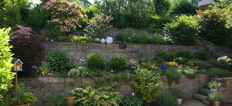 Schröer Garten- und Landschaftsbau begrünt Mauern und pflegt Ihre Pflanzen.