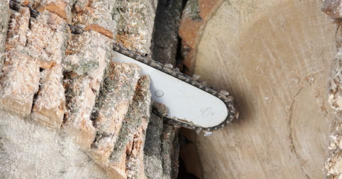 Kettensäge schneidet Baum