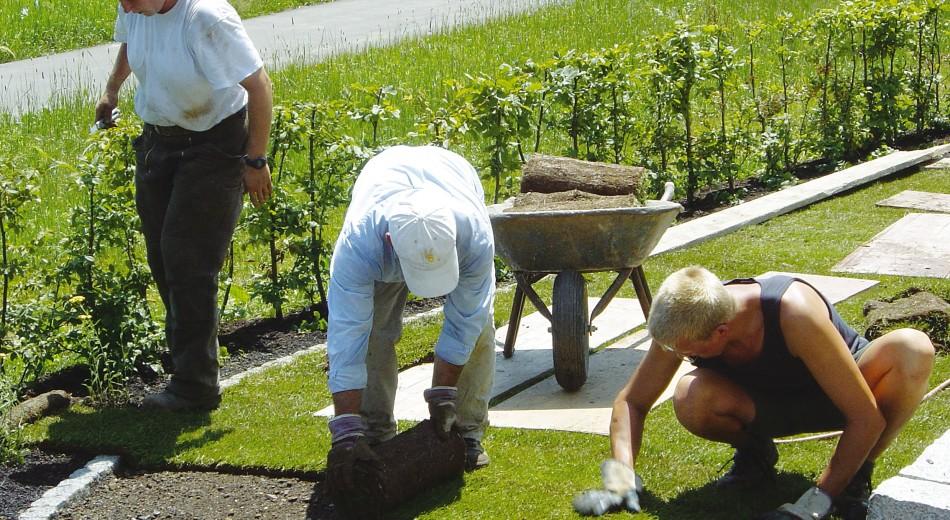 Schröer bietet professionelle Rasenverlegung.