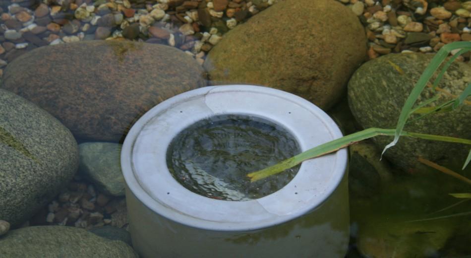 Schröer Garten- und Landschaftsbau zeigt einen Skimmer im Teich