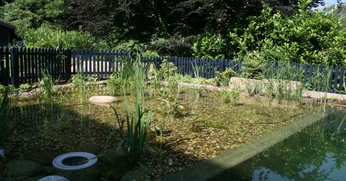 Schröer Garten- und Landschaftsbau zeigt einen Skimmer in der Reinigungszone