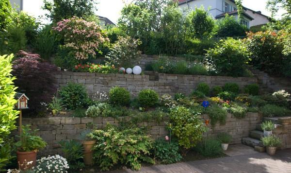 Ansicht von einer von Schröer Garten- und Landschaftsbau gepflegten Mauer mit Pflanzen