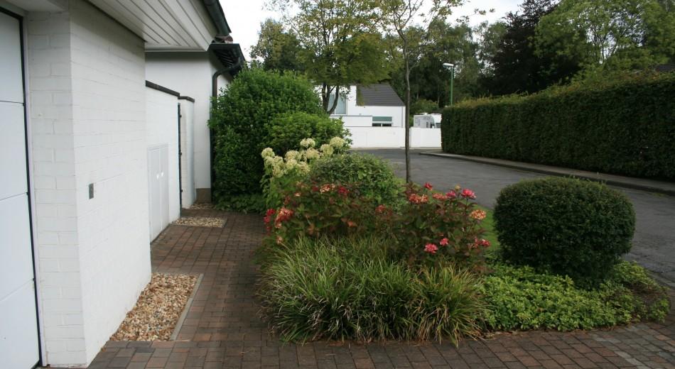 Vorgartenbepflanzung von Schröer Garten-und Landschaftsbau.